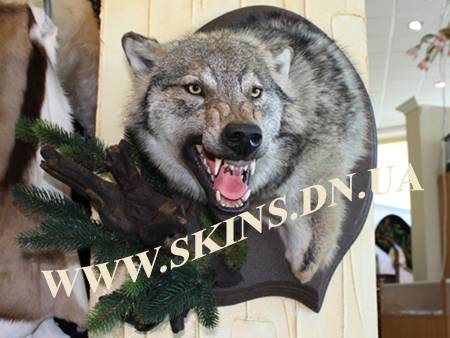 Как сделать шкуру волка